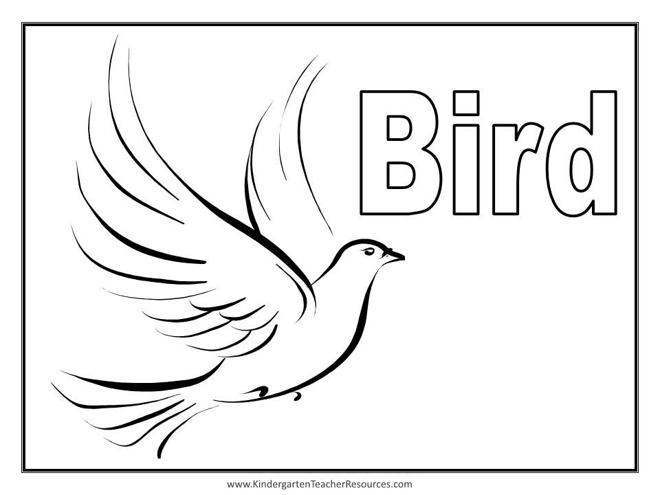 Bird Coloring Pages also with worksheets fish and bird