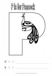 Letter P Handwriting Worksheet