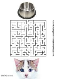 free maze