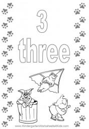 Number 3 Flashcard
